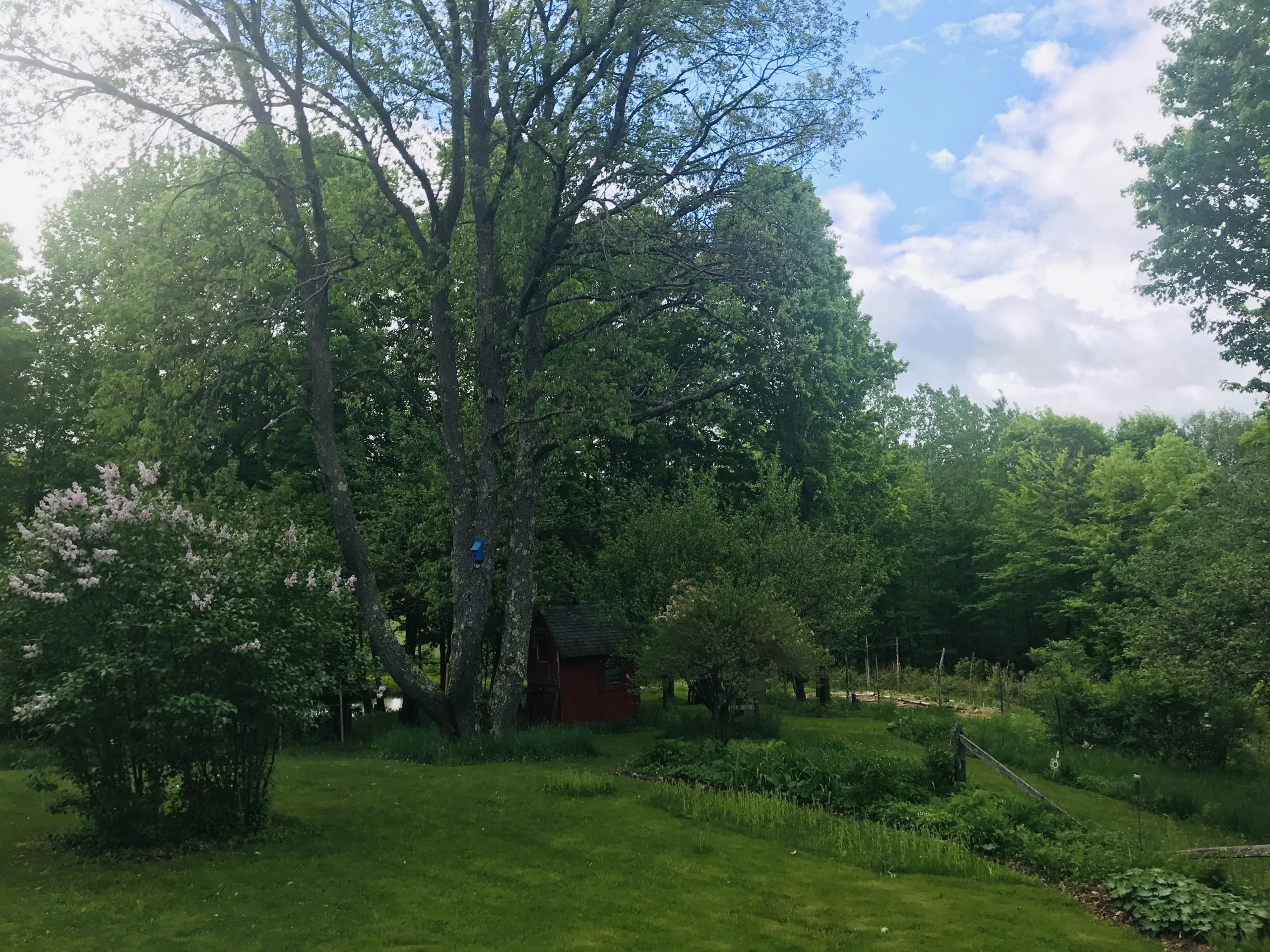 Forest Magic Healing Sanctuary in Plainfield, Vermont