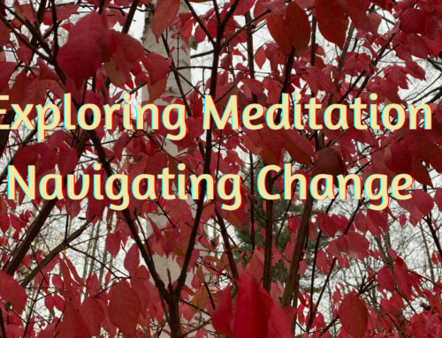 Exploring Meditation ~ Navigating Change
