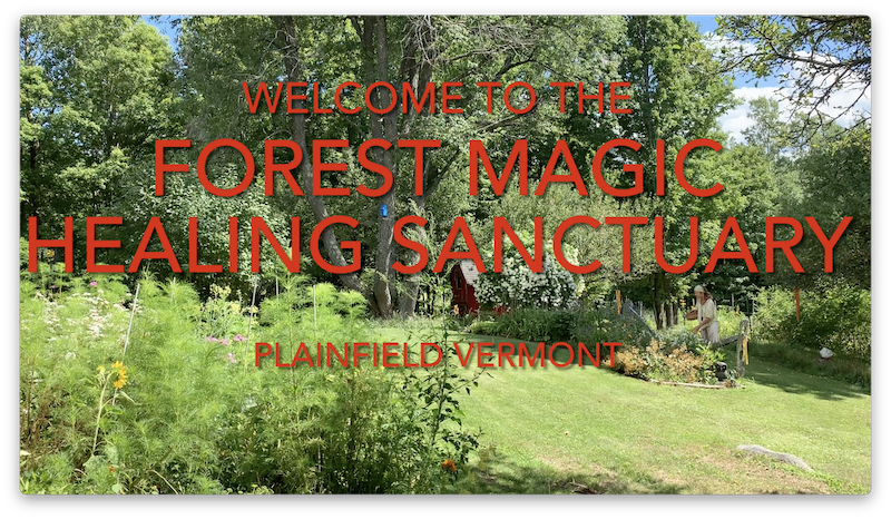 Forest Magic Herbalism Vermont